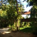 Медитационный центр Дипабхаван на острове Самуи – повесть о семидневном ретрите