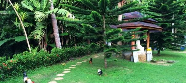 Медитационный центр Дипабхаван на острове Самуи