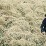 Фильм Лобстер – аллегория современного общества отношений