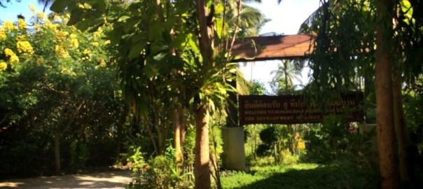 Медитационный центр на острове Самуи
